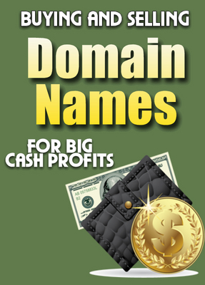 Product picture Buy And Sell Domains PLR
